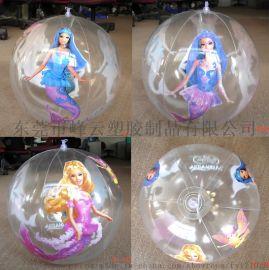 峰云pvc厂家直销广告充气球充气玩具球