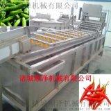 顺泽机械专业供应菠菜清洗机  自动清洗机  网带喷淋清洗机