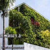 貴州貴陽垂直植物牆設計單位免費設計室內植物牆出圖