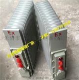 天網防爆廠家直銷 BDR-口Y系列密閉式防爆油汀