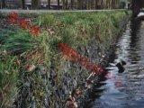 防洪护岸铅丝石笼 河坡铺设铅丝笼护垫