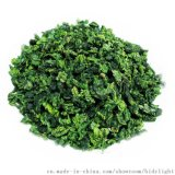 原生態春茶鐵觀音茶葉清香型特級