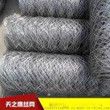 PVC包塑石笼网 格宾石笼 六角网  8号石笼网 石笼网生产厂家
