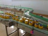 塑钢链板输送机,镀锌链板输送机,链板输送机