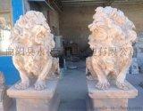 曲阳汉白玉石狮子雕刻厂家加工订做