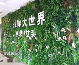 畢節立體仿真植物牆設計和遵義生態植物園林景觀設計價格