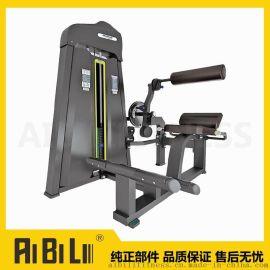 艾必力5102必确款腰肌背肌二合一训练器