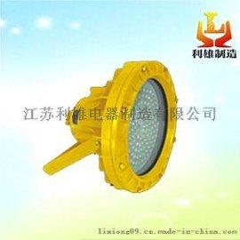 LED防爆投光灯 DC24V小功率节能型单科灯珠防爆灯,小功率防爆灯