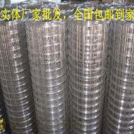 厂家批发养殖用荷兰网 涂塑电焊网 围鸡网 电焊网
