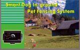 电子宠物围栏(mswt-1200)