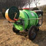 新款手推式汽油高压喷药车园林小型洒水机