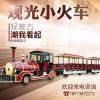 62座观光电动小火车,山东电动小火车,燃油小火车