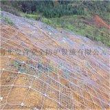 河北SNS型柔性边坡防护网生产厂家