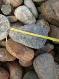 3-5公分天然鹅卵石 保定天然鹅卵石厂家