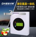 果蔬解毒机多功能家用四级臭氧果蔬消毒机礼品微商厂家