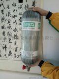 进口呼吸器梅思安BD2100自给式呼吸器整套