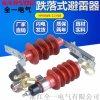 HY5WS-1750 DL-TB可卸式氧化锌避雷器