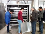 32只烘盘方形真空低温干燥机 蘑菇干燥机
