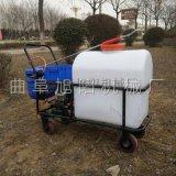 新款农用高压喷雾器105L道路养护洒水机