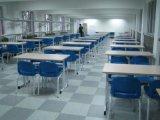 学校专用地板