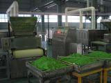 核丰GUE40D电池材料微波干燥设备