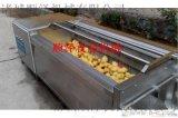 供应胡萝卜毛辊清洗机 蔬菜清洗机 土豆去皮清洗机