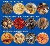 广州雷迈新款旋转式低温烘箱/8层烘20斤物料