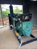 广西玉柴120KW燃气 沼气发电机组厂家供货