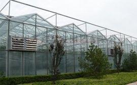 建造玻璃温室大棚公司的联系方式