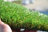 本溪市 森悦SY302150080-53人造草坪生产_足球场草坪