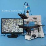 XJL-101A-530HS型正置三目金相显微镜 大平台 金属结构分析科研