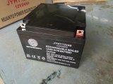 免维护铅酸蓄电池12V24AH