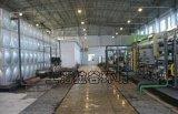 上海拉谷 LTYS10-200脫鹽水處理系統