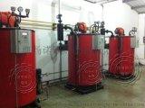 0.3T/0.8MPa燃气蒸汽锅炉