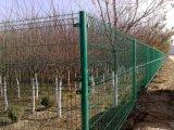 圈地护栏网,围地护栏网,双边护栏网