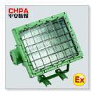 防爆泛光燈(CBT52)