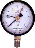 定位型压力表(Y-60D/100D/150D)