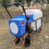 供应手推式高压喷雾器大棚专用打药机