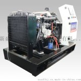 新盛安XSA10NG10kW燃气发电机组
