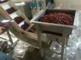 全自动红枣定量包装机械 新疆大枣包装机