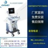 可视人流彩色b超机 宫腔手术监视仪 DW-480