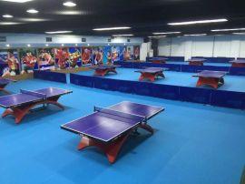 天实体育乒乓球场地地胶羽毛球地胶