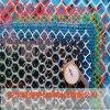 密目塑料網,養殖塑料網,塑料圍欄網
