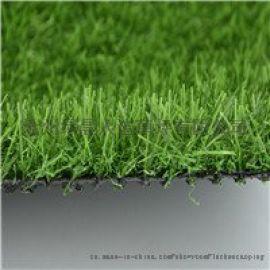 定制幼儿园中小学专用足球场人造草坪 户外仿真草坪