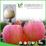 根皮素(Phloretin) 蘋果皮提取物 CAS# 60-82-2