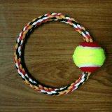 宠物用品O型带网球棉绳玩具手拉拖拽磨咬狗玩具厂家直销出口外贸批发
