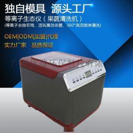 廠家批發果蔬清洗機等離子生態儀OEM/ODM果蔬消毒機