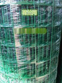 雨浓荷兰网 围栏网 养殖荷兰网 大丝荷兰网 涂塑荷兰网