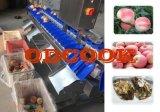 山東諸城果蔬類產品分級機