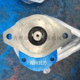 山东北方供应环卫车齿轮泵CBY3063-172L